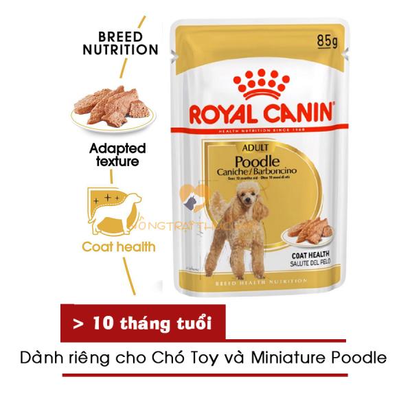 Pate Royal Canin cho chó POODLE WET 85gr - [Nông Trại Thú Cưng]