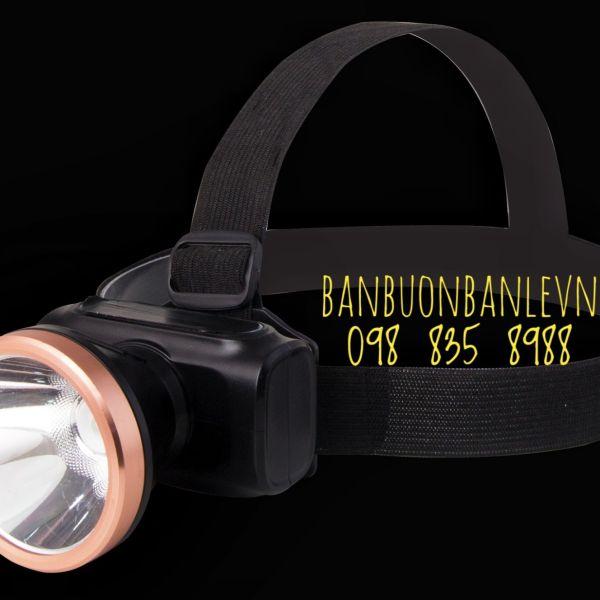 ĐènPinLedĐộiđầu3WRạng Đông LED D PDD02L/3W