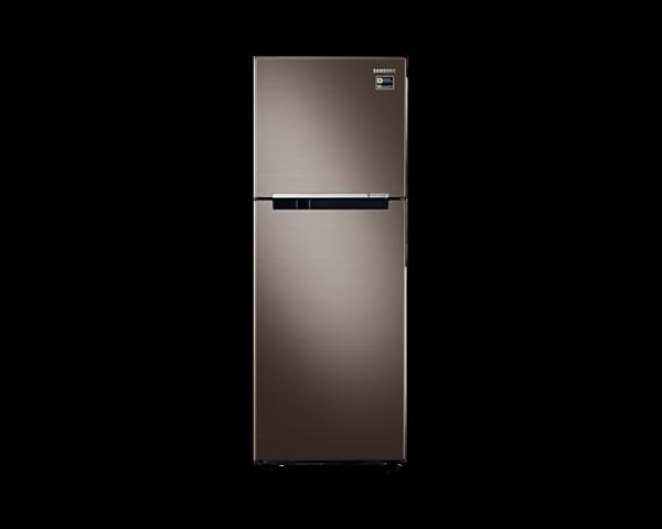 Tủ lạnh Samsung hai cửa Digital Inverter 243L (RT22M4040DX)