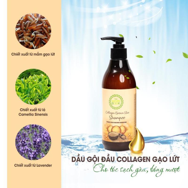 Dầu gội trị gàu mượt tóc Collagen Gạo Lứt The Nature Book 300ml