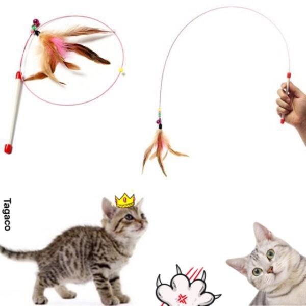 Đồ Chơi Cho Mèo-Cần Câu Mèo Meo Meoooo!!!