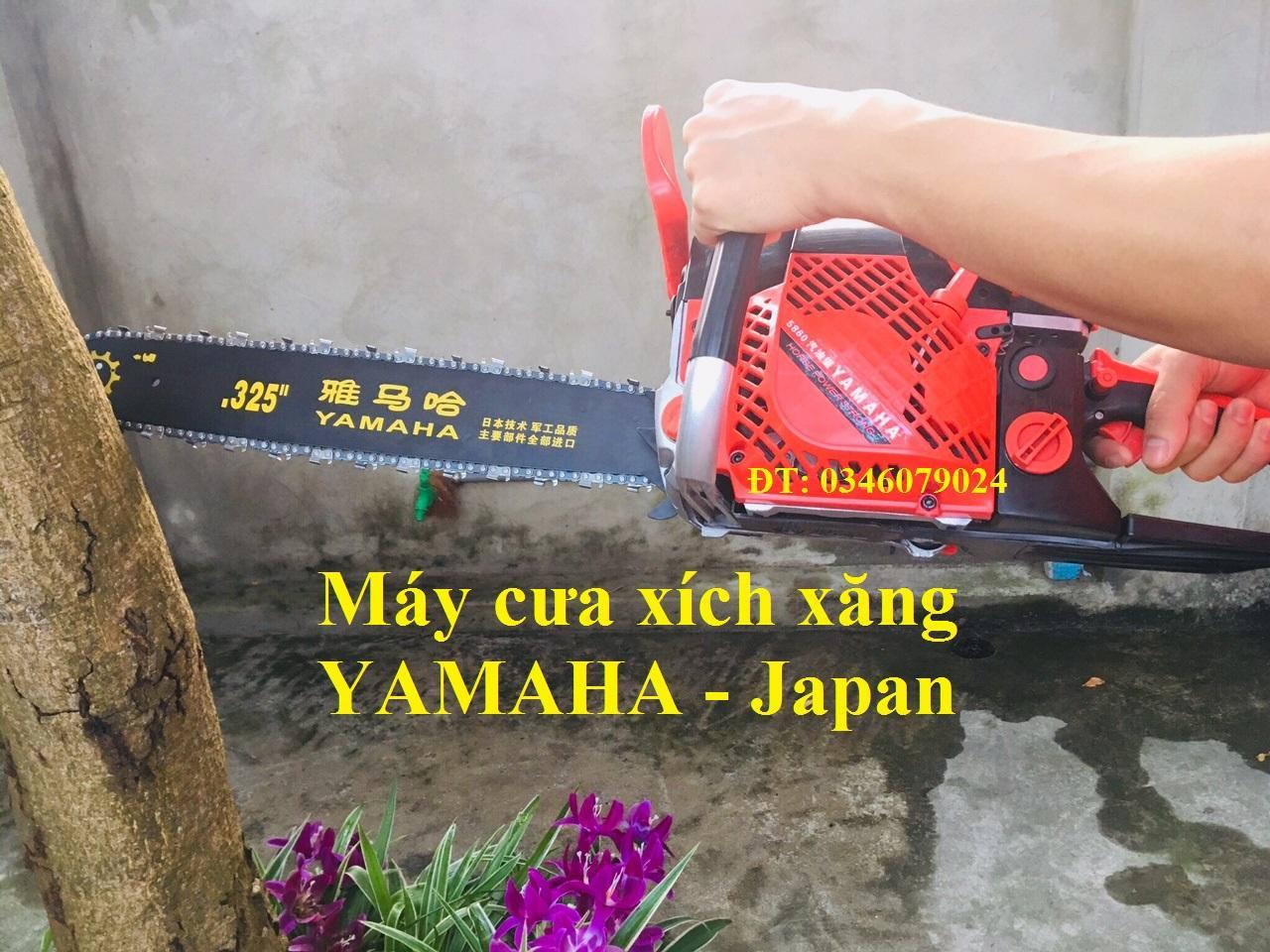 máy cưa cây cưa gỗ chạy xăng YAMAHA 5860 - YAMAHA 5860