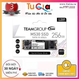 Team Group MS30 M.2 SATA SSD 256Gb - Hàng chính hãng thumbnail
