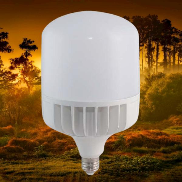 Bóng đèn led siêu sáng ĐIỆN QUANG  loại 40w ánh sáng trắng siêu tiết kiệm điện. chống cháy nổ, có thể dùng ngoài trời mưa, chống va đập mạnh, chùm tia sáng 360 độ tuổi thọ bóng lên đến 80000h ( loại bóng đèn màu trắng)