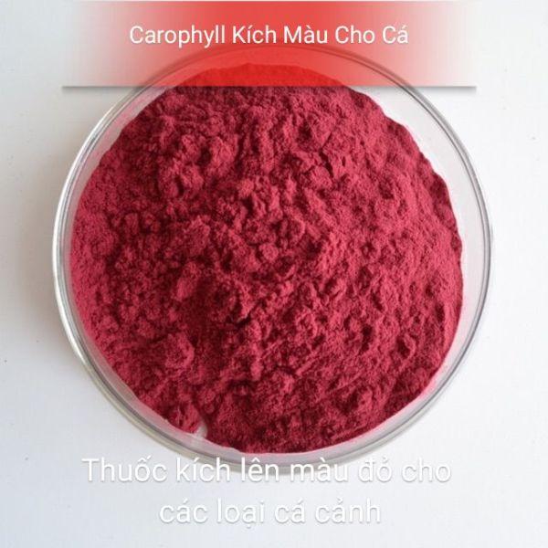 Carophyll kích màu đỏ cho các loại cá có thể trộn đồ tươi cho cá cảnh (1 gram) cam kết hàng đúng mô tả chất lượng đảm bảo