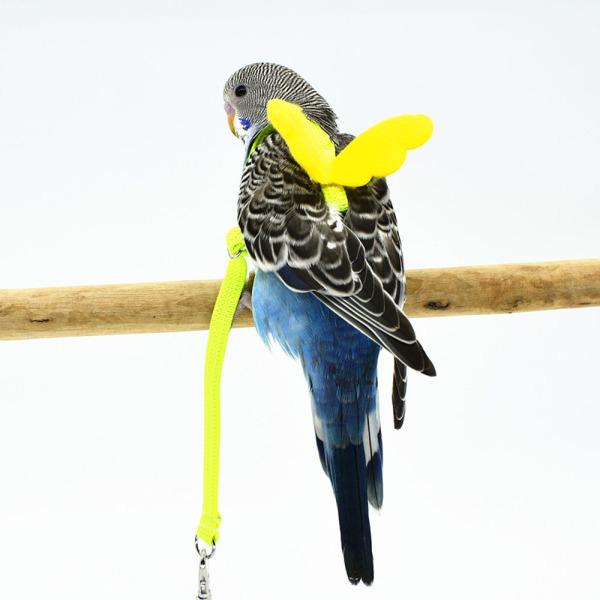 GA27524 Dây Thừng Dễ Thương, Đồ Dùng Cho Chim Cockatiel Lovebird Dây Dắt Chim Thú Cưng Dây Kéo Tập Luyện Ngoài Trời, Cho Vẹt Hoa Mẫu Đơn Budgerigar