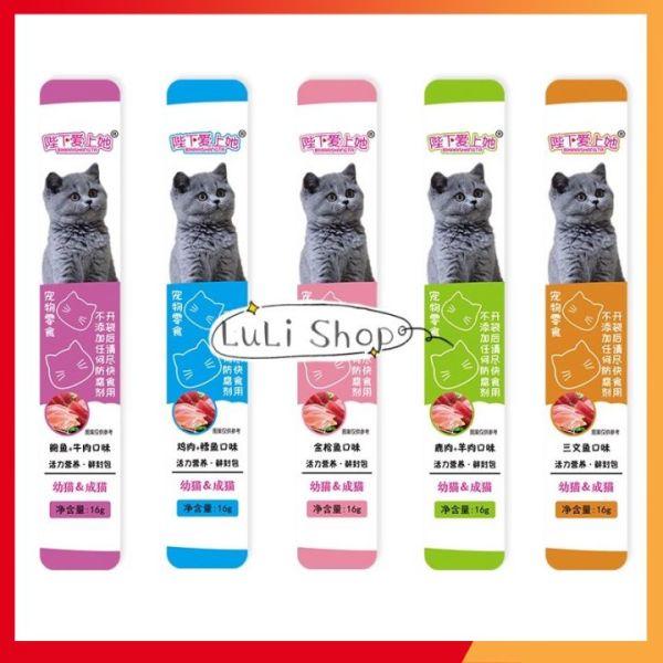 Súp thưởng cho mèo BiXi gói 10 thanh 🍗 DINH DƯỠNG 🍗 05 vị que 16g