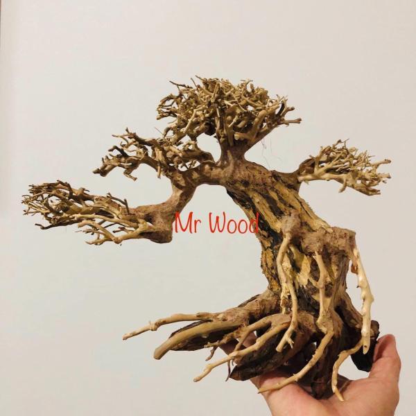 Lũa bonsai trang trí hồ cá cao 20 dài 25