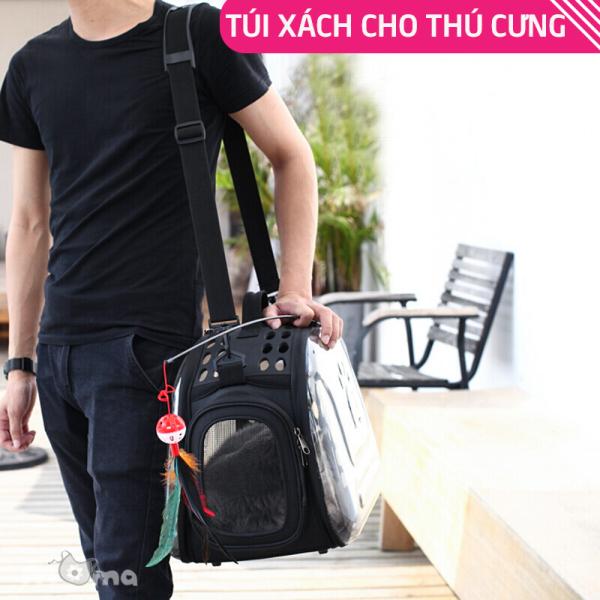 Túi đựng thú cưng, túi xách vận chuyển chó mèo, ba lô đựng thú cưng đeo vai, nhựa trong suốt cao cấp, lồng đựng mèo thoáng khí, túi du lịch có thể xếp gọn P001