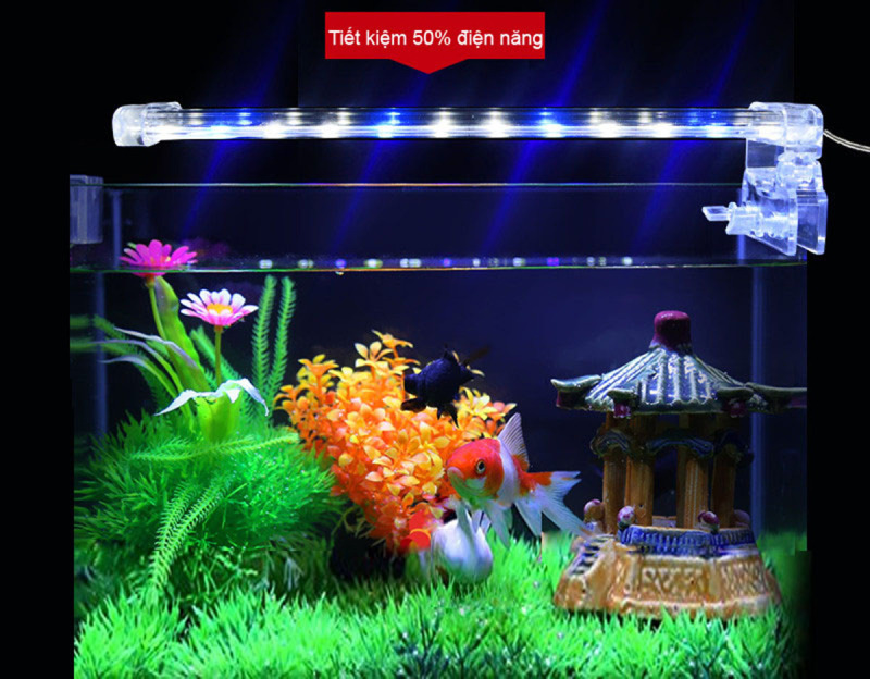 Đèn trang trí, Đèn led trang trí, Đèn led lắp cho bể cá LED D30 - Ánh sáng đẹp, Chất liệu trong suốt, bền bỉ, Nhỏ gọn dễ dàng sử dụng-Chất lượng chính hãng, Mua ngay