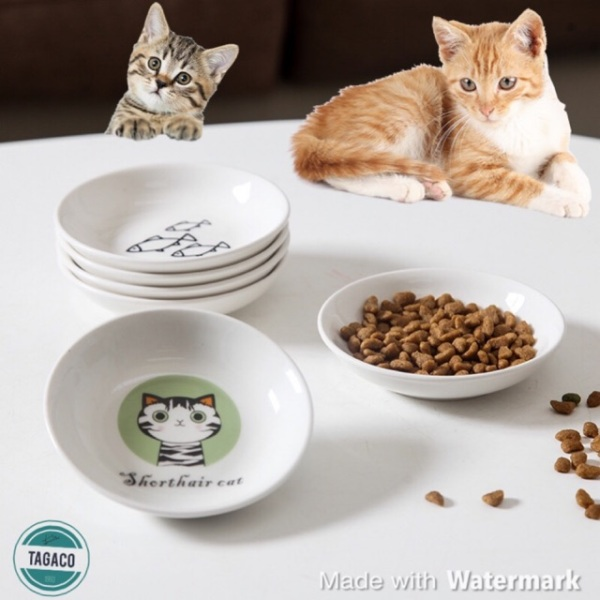 Bát sứ cực xinh cho chó mèo ăn