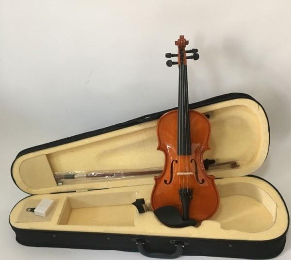 Violin vĩ cầm chuyên nghiệp