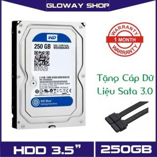 Ổ cứng HDD WD Western Digital 250GB - Hàng nhập khẩu bảo hành 01 tháng thumbnail
