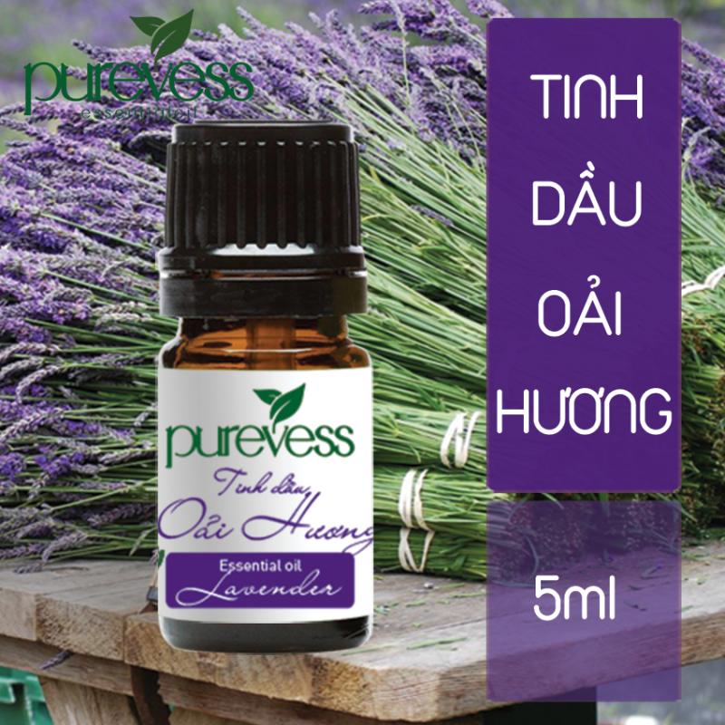 Tinh dầu Oải Hương giúp giảm stress trấn tĩnh tinh thần giúp ngủ ngon 5ml PUREVESS nhập khẩu