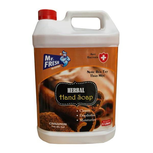 Nước rửa tay khử mùi Hàn quốc Mr.Fresh 5L Hương Quế GSG430