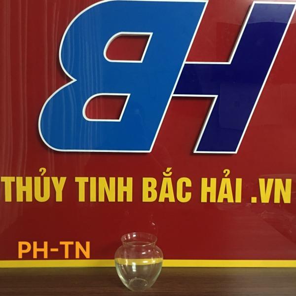 Mẫu Bình Bèo Nuôi Cá -TN Bình Thủy Tinh Và Hũ Thủy Tinh Ngâm Rượu Cao Cấp SX tại Việt Nam