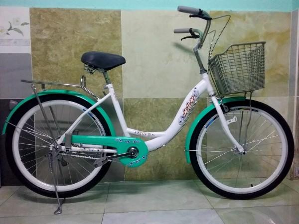 Phân phối Xe đạp thông dụng mini NEW 100%