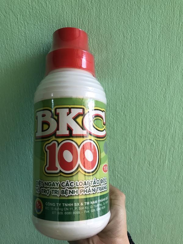 Sản phẩm BKC 100 chuyên diệt các loại tảo độc, hỗ trợ trị bệnh phân trắng