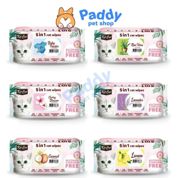 Khăn Giấy Ướt Kháng Khuẩn, Tắm Khô Cho Mèo Kit Cat (80 Miếng)