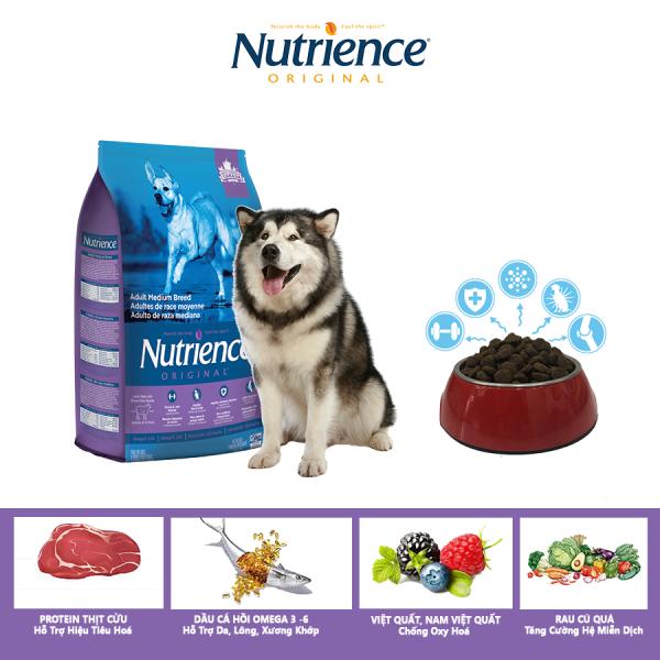 Thức Ăn Cho Chó Alaska Nutrience Original Phát Triển Cơ Bắp, Xương Sụn Cơ Khớp, Hệ Miễn Dịch, Hệ Tiêu Hóa Khỏe Mạnh, Da Lông Bóng Mượt - Thịt Cừu, Rau Củ Và Trái Cây Tự Nhiên