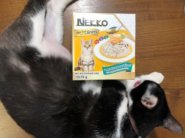 Pate Nekko Gói 70g Cho Mèo - Combo of 48 pcs