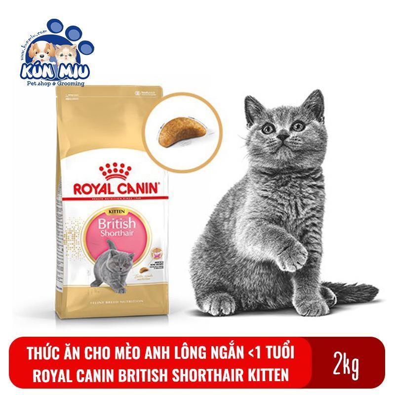 Thức ăn cho mèo con giống Anh lông ngắn Royal Canin British Shorthair Kitten túi 2kg