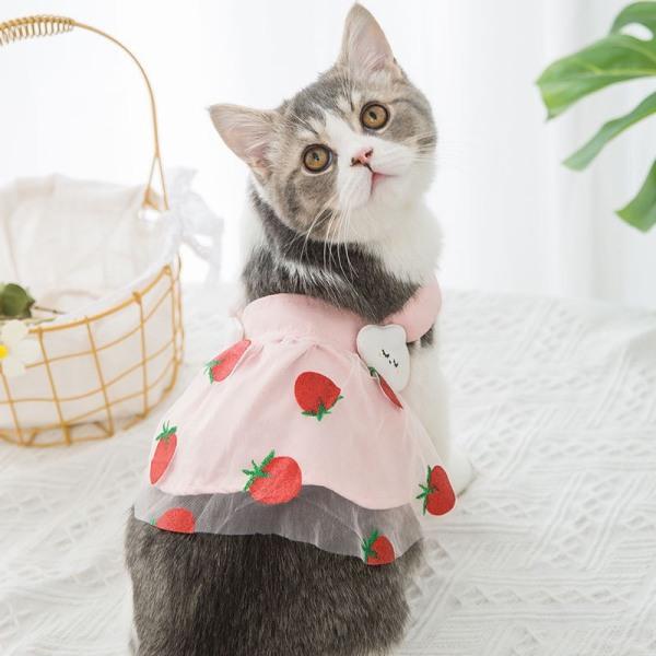 Váy thiết kế cho chó mèo - váy yếm đeo dây dâu tây đai váy mây trắng nhí siêu dễ thương cho chó mèo