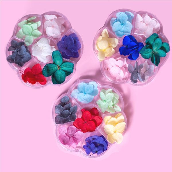 Hoa khô trang trí móng tay - Set 7 màu hoa khô nail cánh hoa to và mỏng đắp ẩn theo phong cách Hàn Nhật giá rẻ