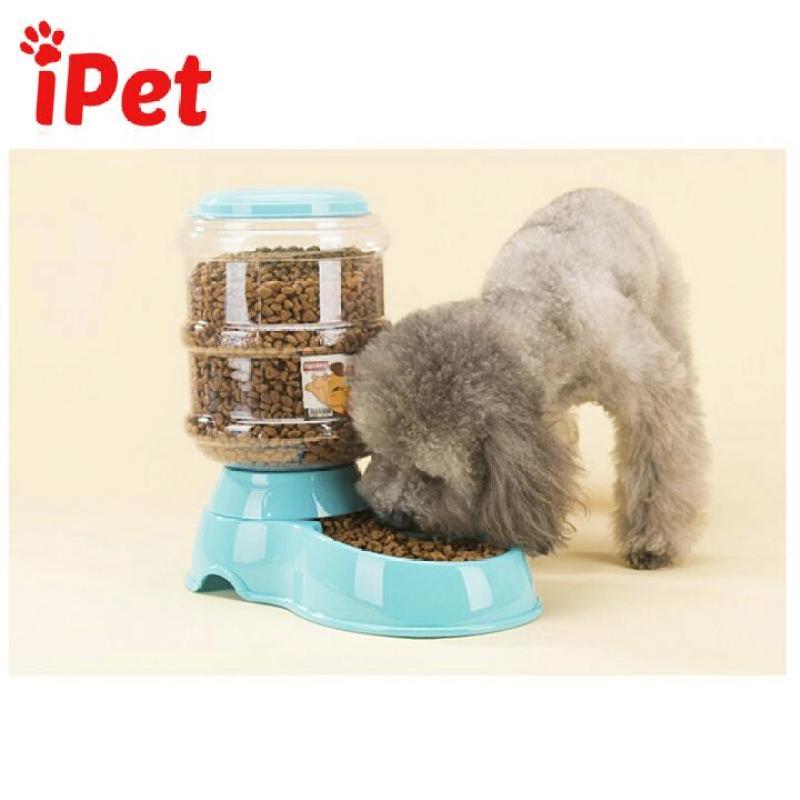 Khay Bát Ăn Tự Động Cho Chó Mèo 3.5L