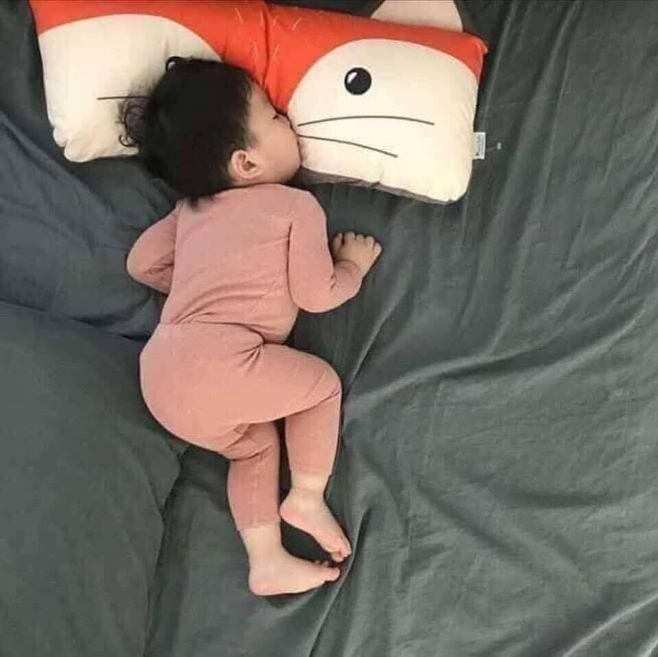 bộ mặc ngủ-bộ thu đông chổng mông cho bé chất borip mịn co giãn siêu HOT Nhật Bản