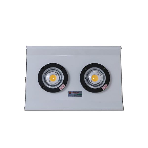 Đèn chiếu bè DC 150w D B04L/150w