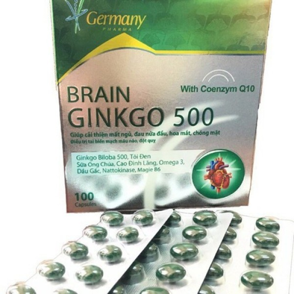 Brain Ginkgo 500 - Bổ sung dưỡng chất cho não