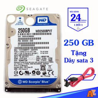 [HCM]Ở CỨNG LAPTOP HDD WD 160GB 250GB 320GB 500GB 1TB thumbnail