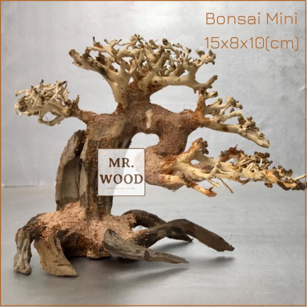 Lũa Bonsai mini cho hồ thủy sinh - 10x15cm