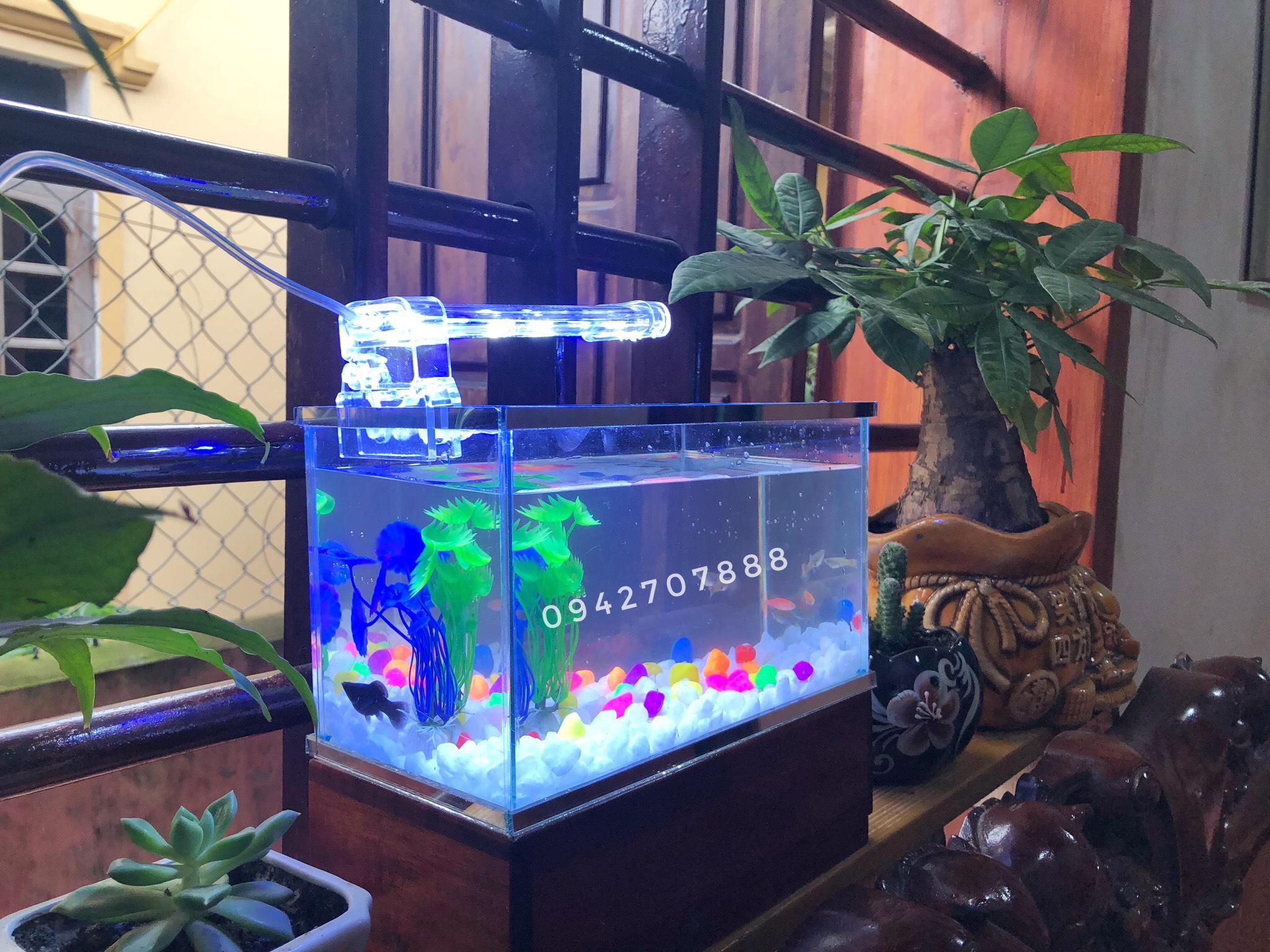 Set bể cá mini 25x13x15cm và đèn led 4w ( tặng cây + sỏi + thức ăn) - Sắp  xếp theo liên quan sản phẩm
