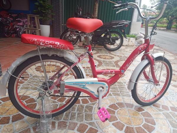 Phân phối xe đạp thống nhất 20-03