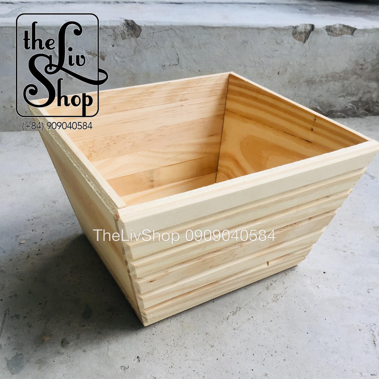 Combo 5 chậu gỗ thông size 1