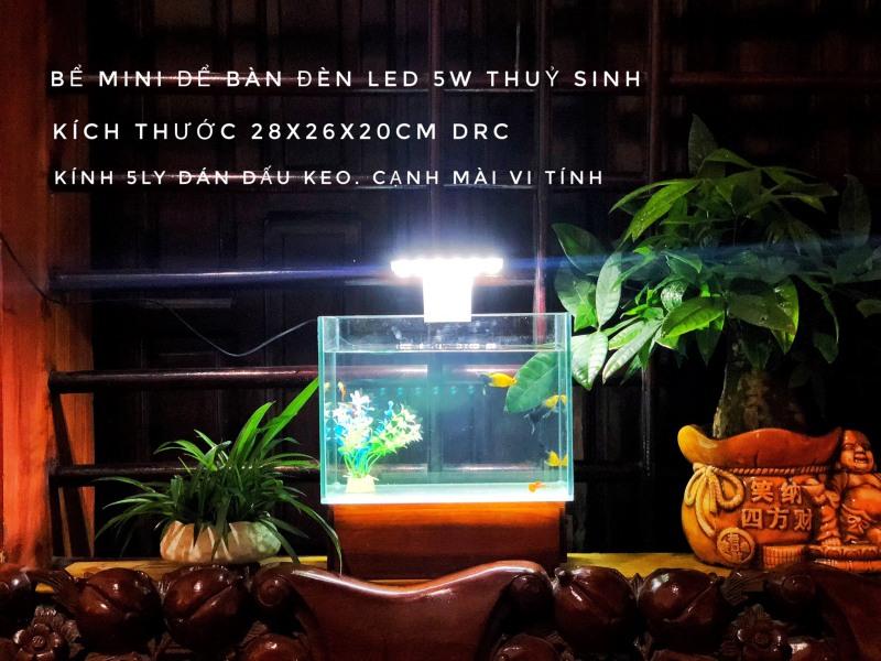 RBS Bể cá để bàn 28x16x20cm bo cạnh kèm đèn led