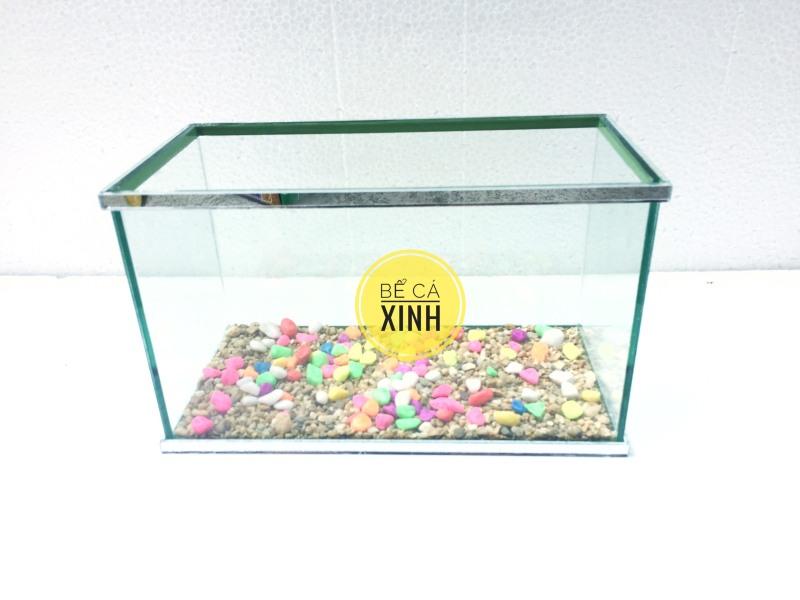 Bể cá mini có dán viền gương đẹp , sang và chắc chắn cỡ 25x13x15cm ( tặng thức ăn và sỏi nền )