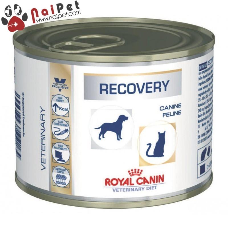 Thức Ăn Dinh Dưỡng Pate Hỗ Trợ Phục Hồi Cho Chó Mèo Recovery Royal Canin Lon 195g