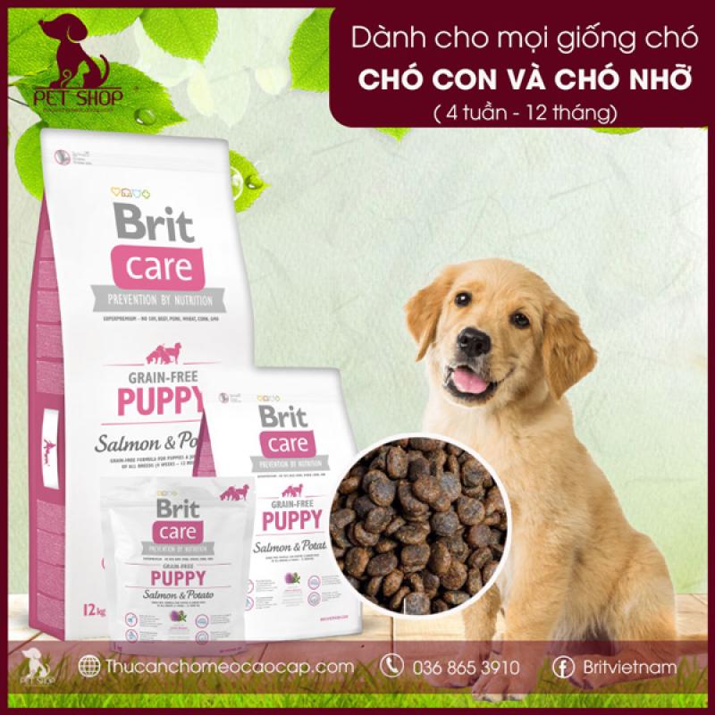 Thức Ăn Cho Chó Con Ăn Dặm, Chó Giống Nhỏ Dưới 12 Tháng Brit Care Grain-Free Puppy Salmon & Potato