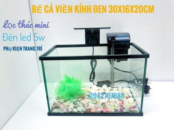 bcx Trọn bộ bể cá cảnh 30x16x20cm DRC (về chỉ thả cá)