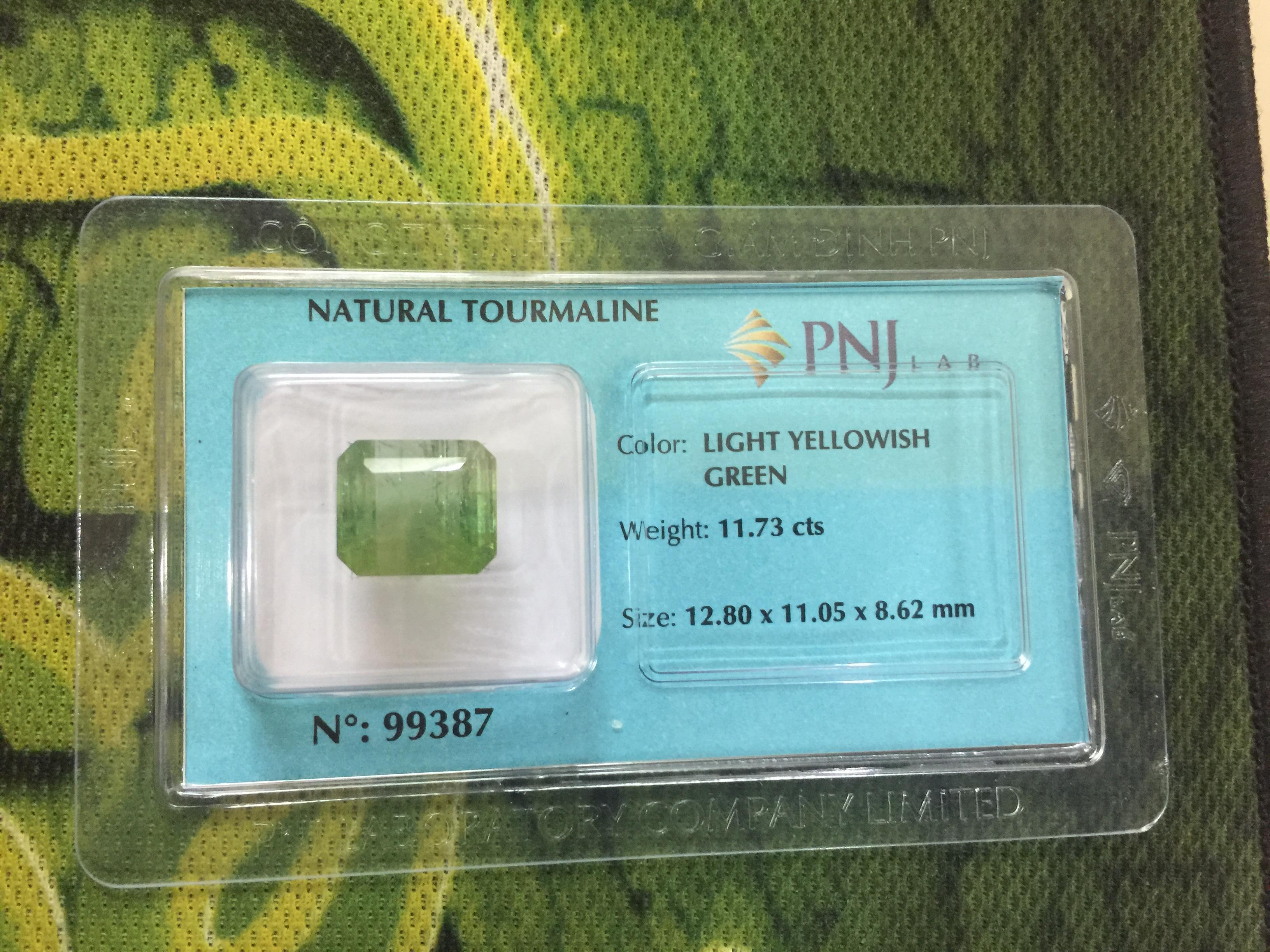 Viên đá Tourmaline thiên nhiên màu xanh vàng PNJ 99387