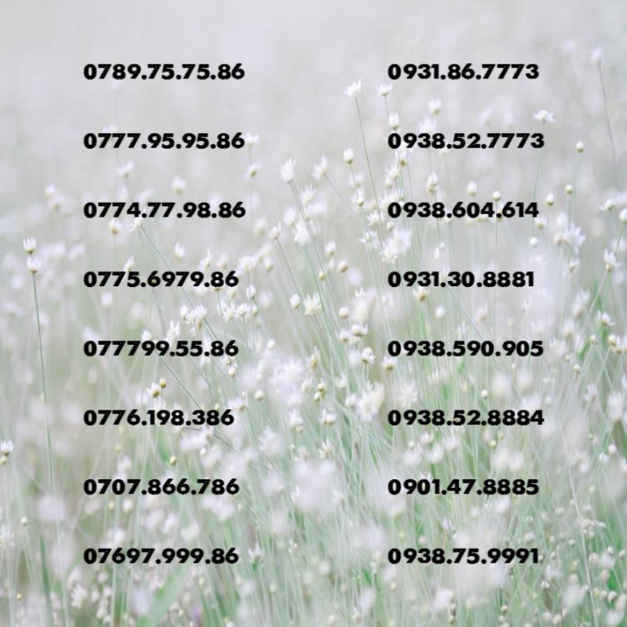 Sim 4G Tốc độ Cao +Sim Số đẹp +Sim Phong Thủy Đang Khuyến Mãi