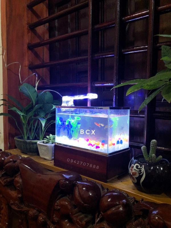 Set bể cá mini viền gương 25x13x15cm + đèn led 4w ( tặng đồ trang trí và đồ ăn cá)