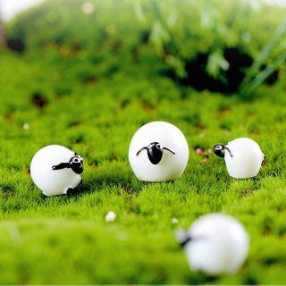 Bộ 4 Cừu mini trang trí tiểu cảnh, Terrarium... thumbnail
