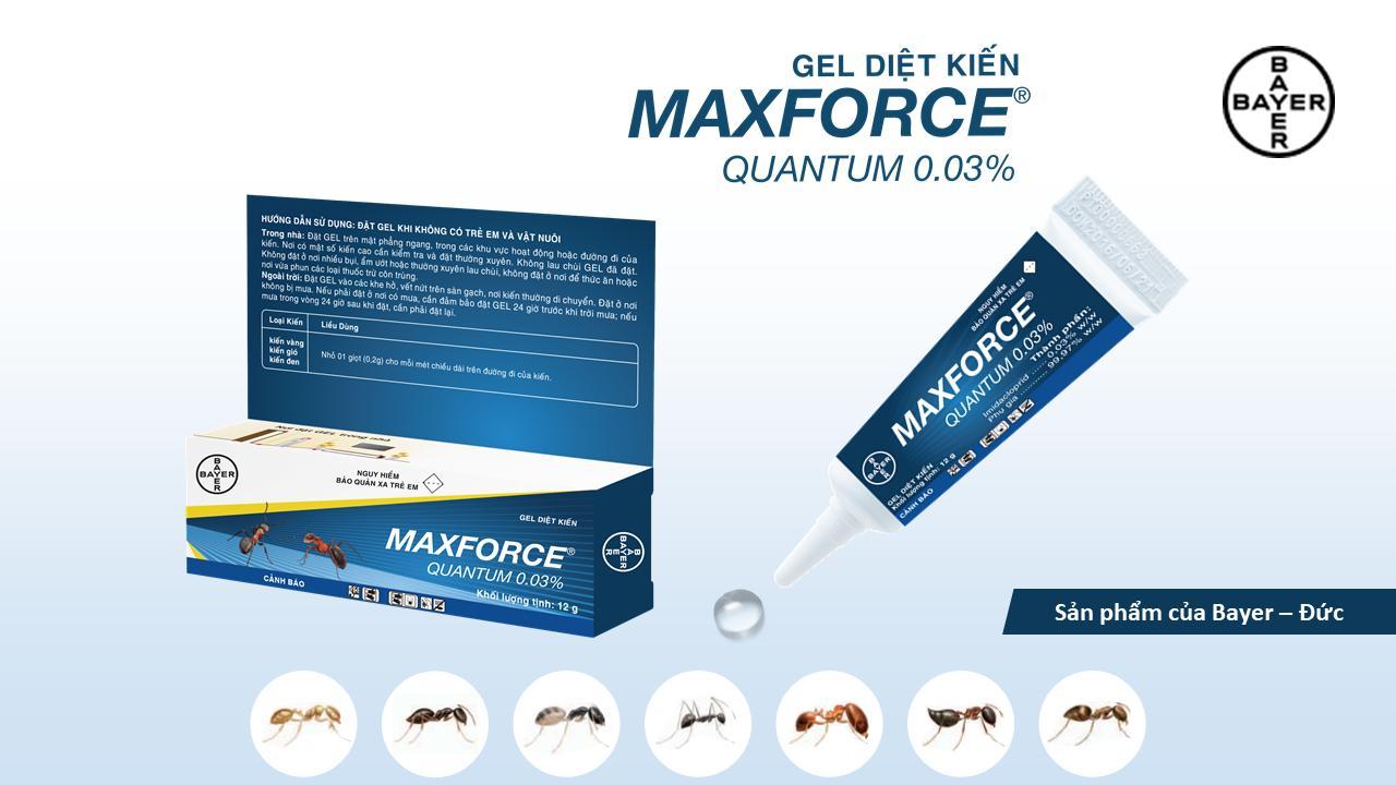 DIỆT KIẾN DẠNG GEL - MAXFORCE QUANTUM 12GR