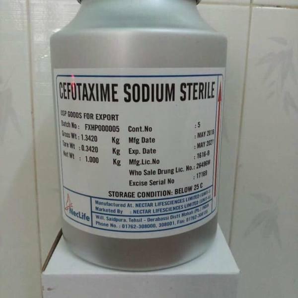 Cefotaxime Neclife (Dùng trong nuôi trồng thuỷ sản)