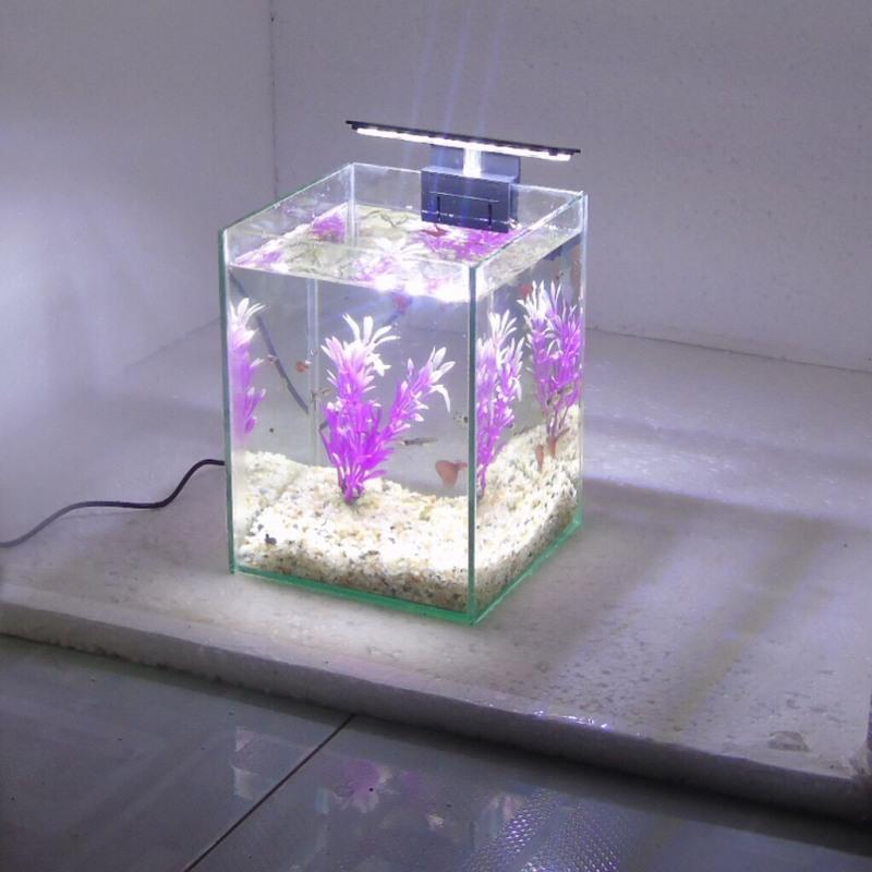RBS Bể cá mini đèn led để bàn 15x15x20