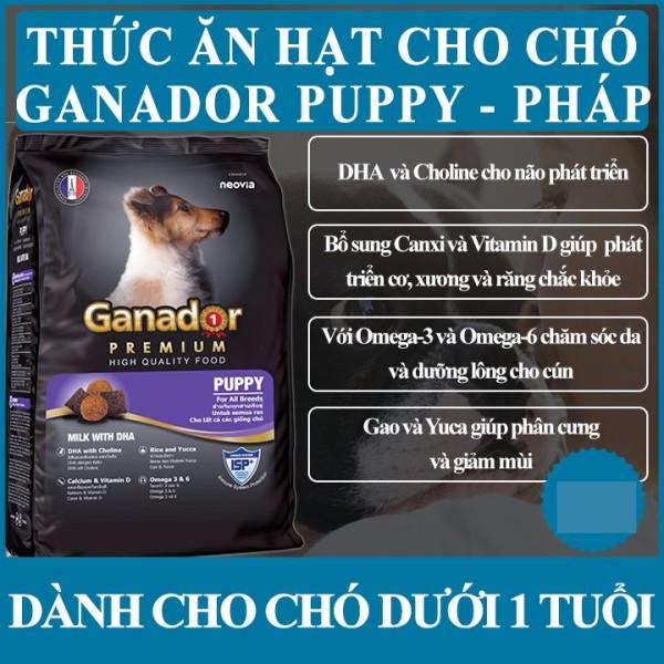 Thức ăn cho chó con Ganador Puppy Sữa và DHA 400g - Pháp